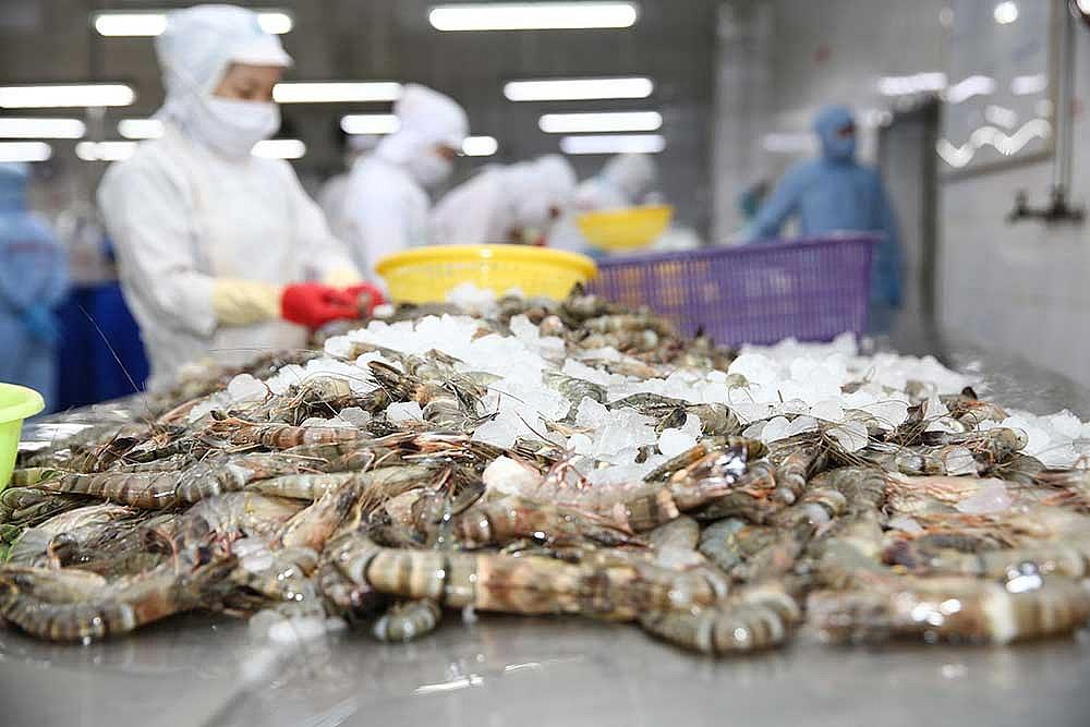 Thủy sản Minh Phú sẽ kháng cáo khi bị Mỹ áp thuế như tôm Ấn Độ - Ảnh 1.
