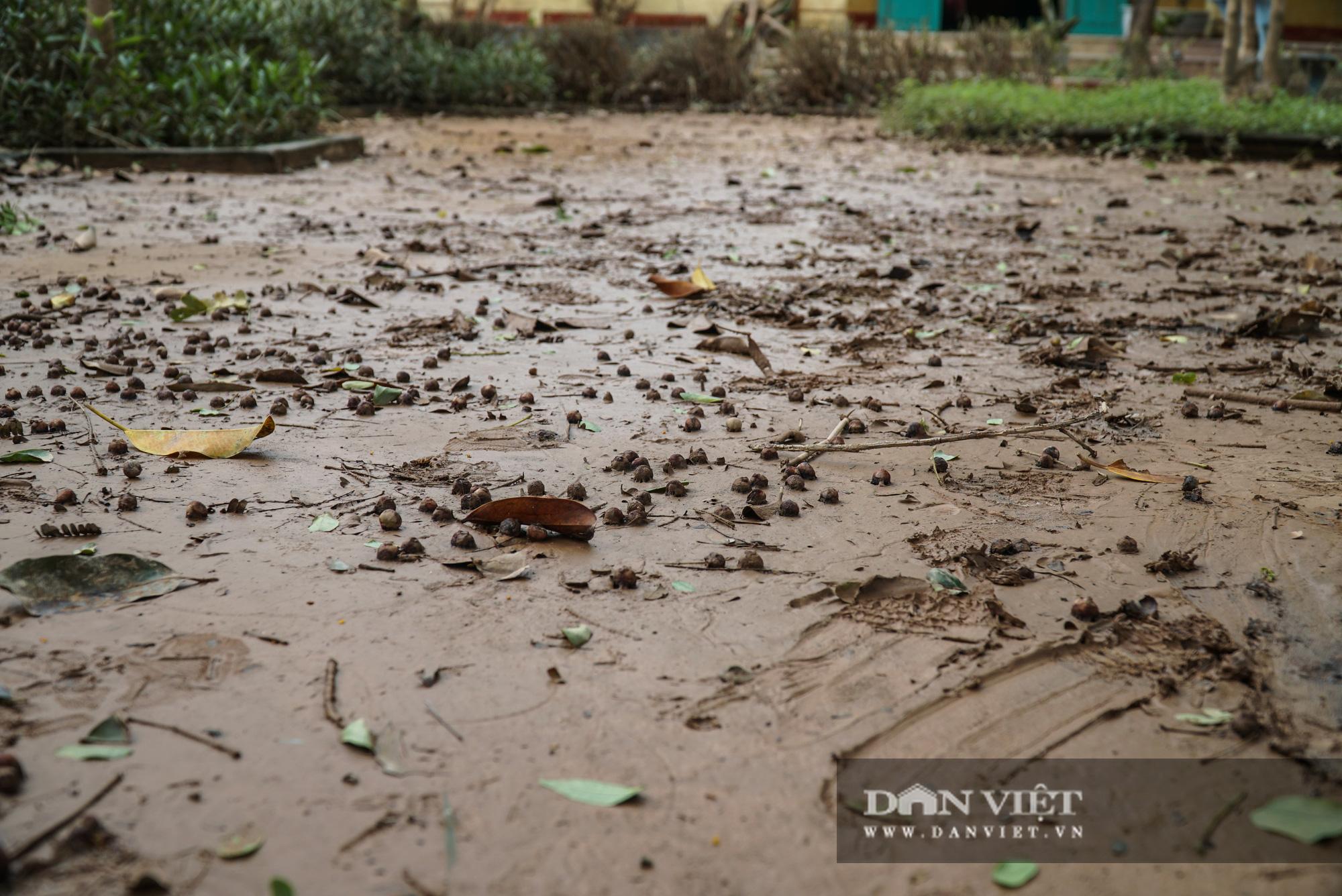 Quảng trị: Các trường học được hỗ trợ máy rửa bùn non sau bão lũ - Ảnh 6.
