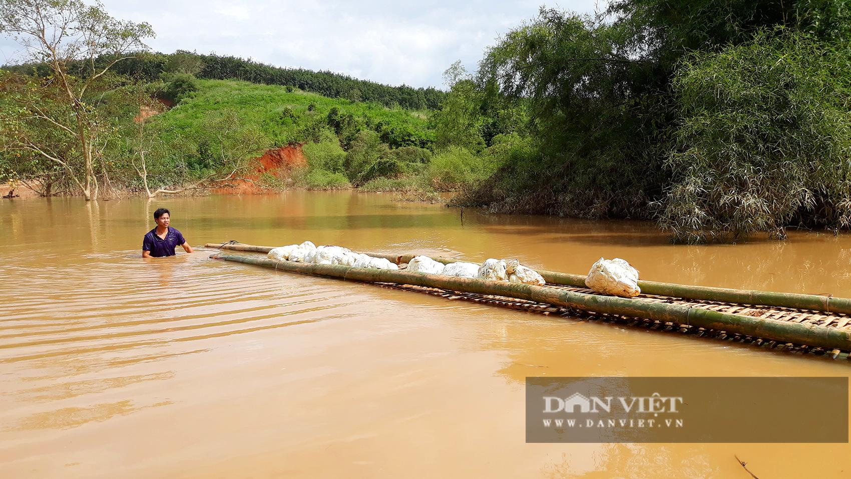 Thủy điện tích nước vô lối ở Kon Tum: Nhà máy vẫn tích nước, không ngán ai - Ảnh 2.