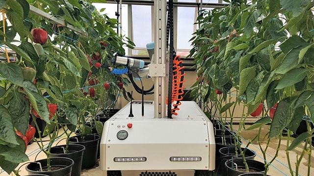 4 xu hướng nông nghiệp thông minh trong tương lai - Ảnh 1.