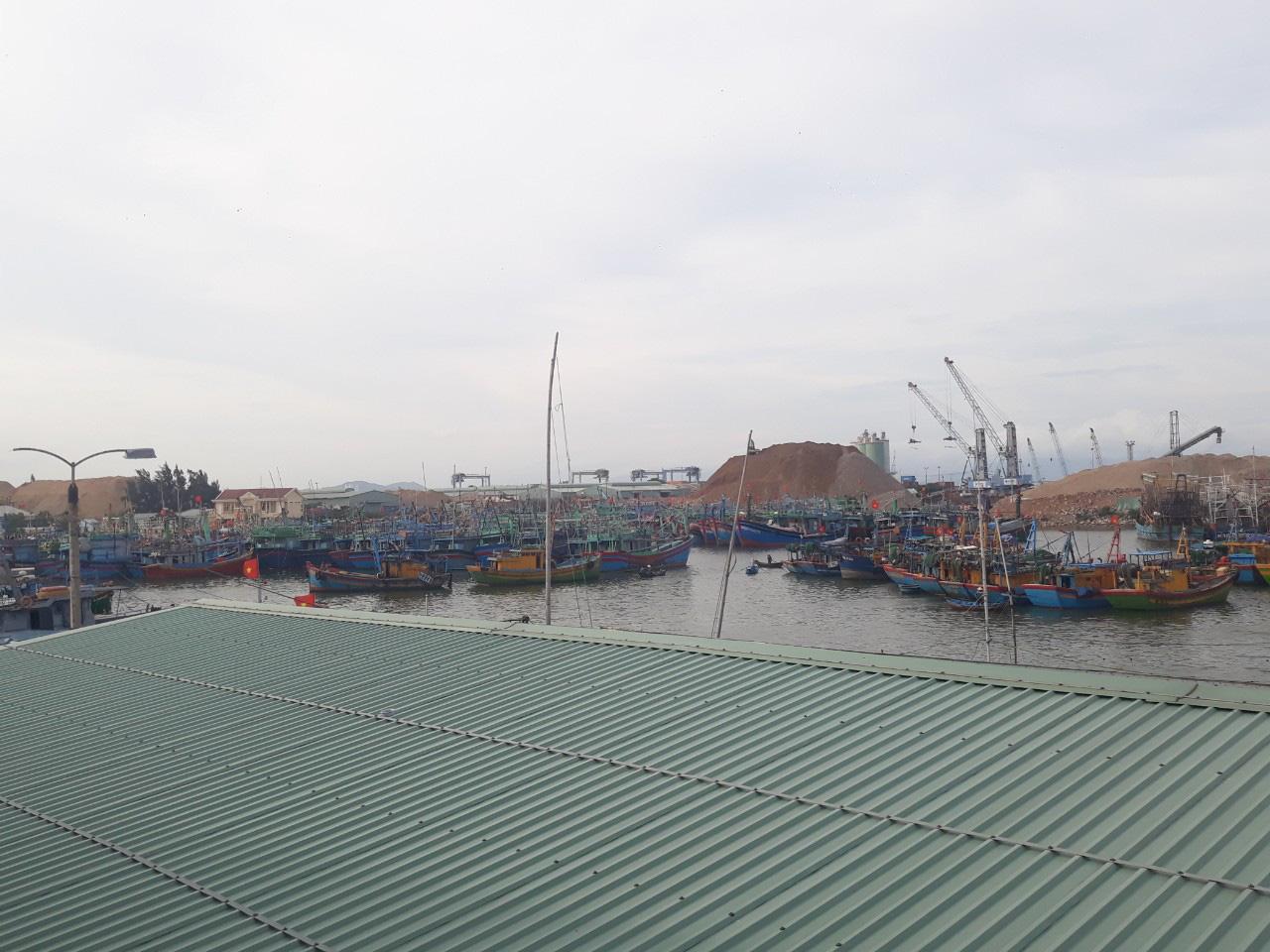 Bão số 9: Bình Định cấm biển, 190 tàu đang di chuyển khỏi vùng nguy hiểm - Ảnh 1.