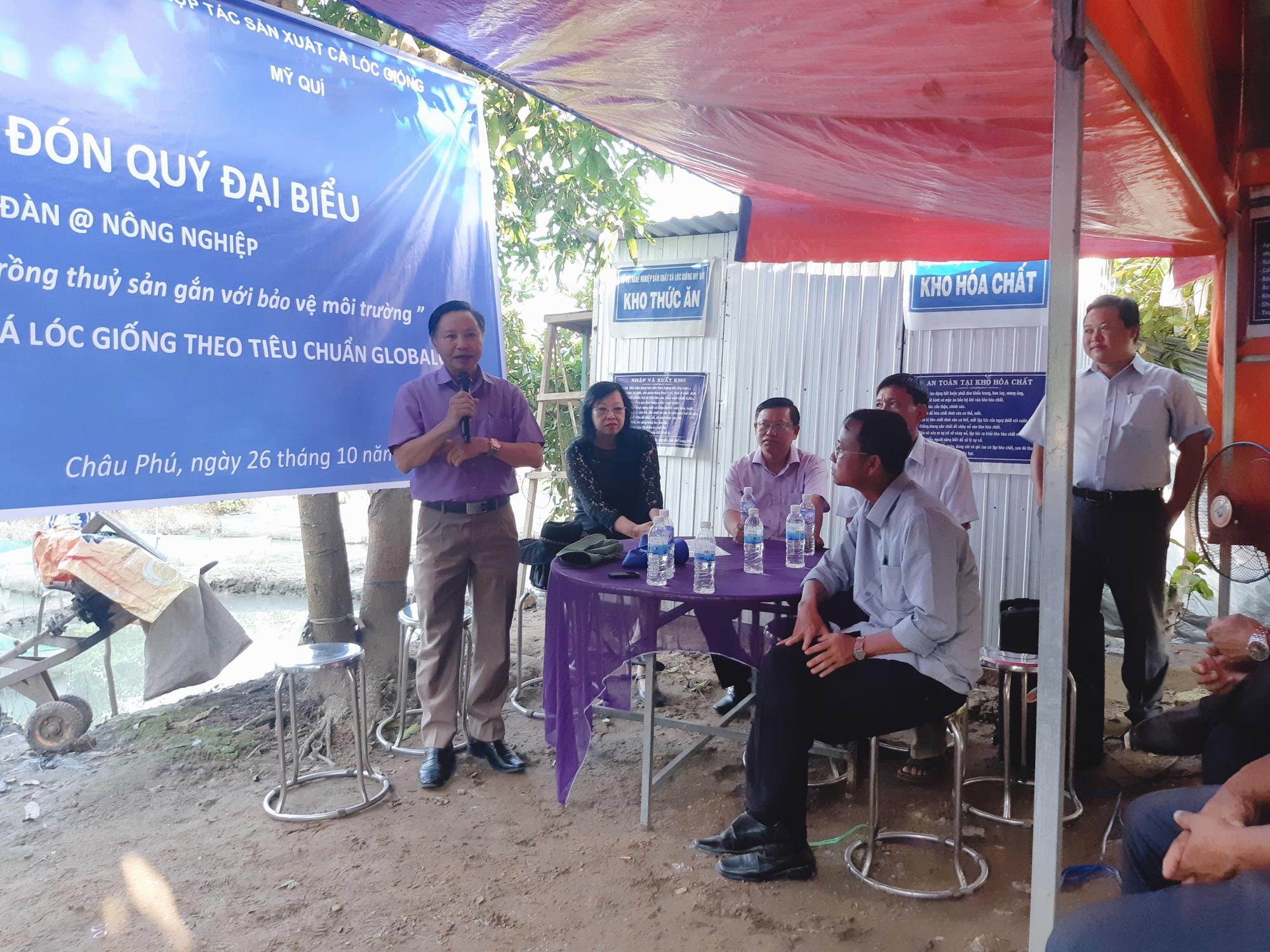 An Giang: Tổ nghề nghiệp nuôi cá lóc giống đầu tiên đạt chuẩn GlobalGap - Ảnh 1.