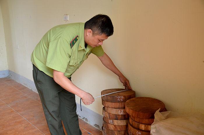 Điện Biên: Không lơ là trong công tác bảo vệ rừng - Ảnh 3.