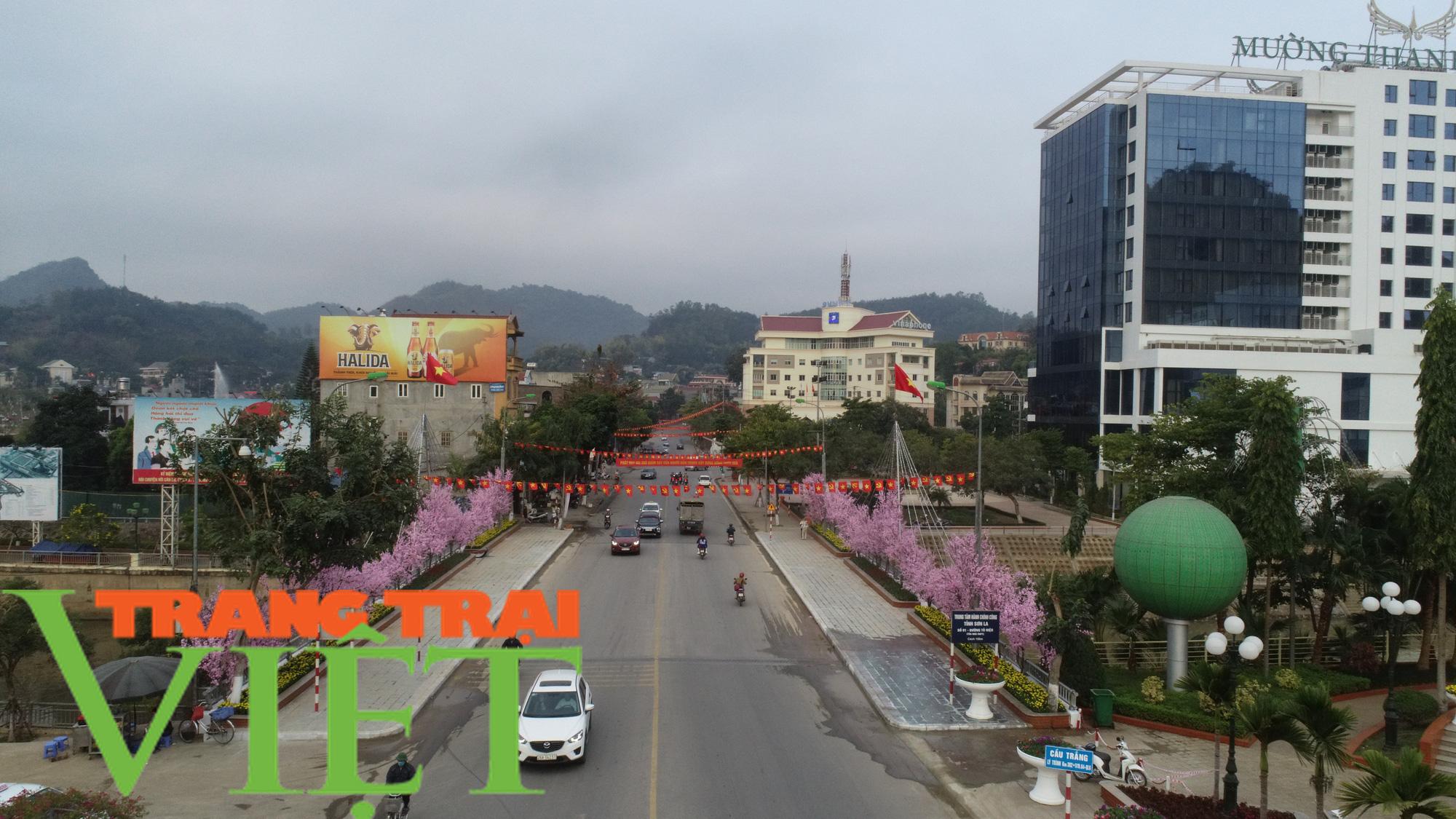 TP. Sơn La thực hiện thu ngân sách, xây dựng và phát triển đô thị - Ảnh 4.