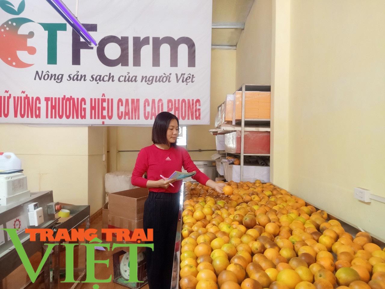 Hòa Bình: Cây ăn quả có múi là sản phẩm chủ lực khẳng định vị thế trên thị trường - Ảnh 3.