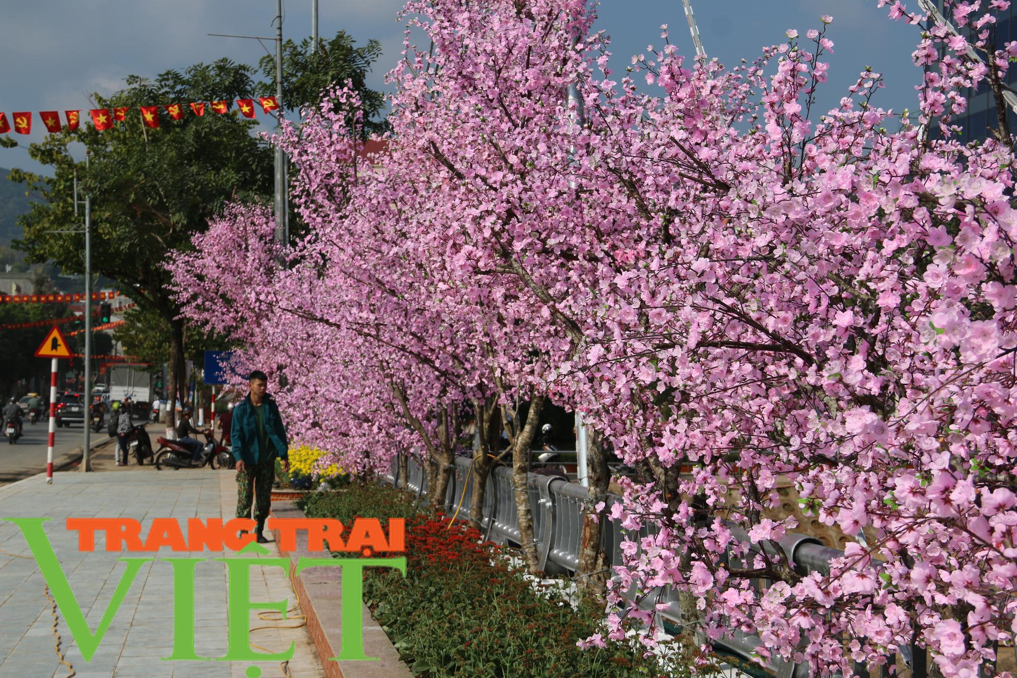 TP. Sơn La thực hiện thu ngân sách, xây dựng và phát triển đô thị - Ảnh 7.