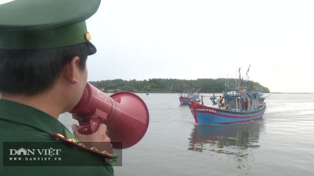 Quảng Ngãi: Chủ tịch UBND tỉnh khẩn cấp ban hành lệnh cấm tàu thuyền ra khơi  - Ảnh 1.