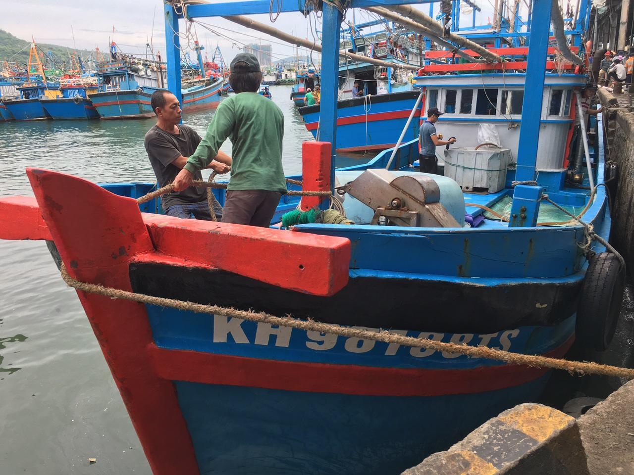Tàu tấp nập vào bờ, Ngư dân Khánh Hòa hối hả bán hải sản tránh bão - Ảnh 2.
