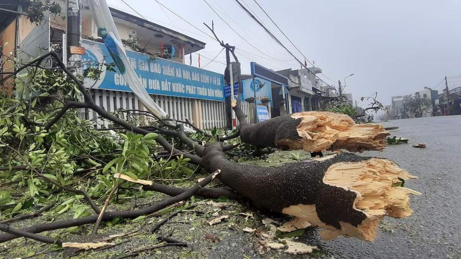 """Bãi """"chiến trường"""" mà bão số 9 tràn qua và để lại ở Quảng Nam, Quảng Ngãi - Ảnh 4."""