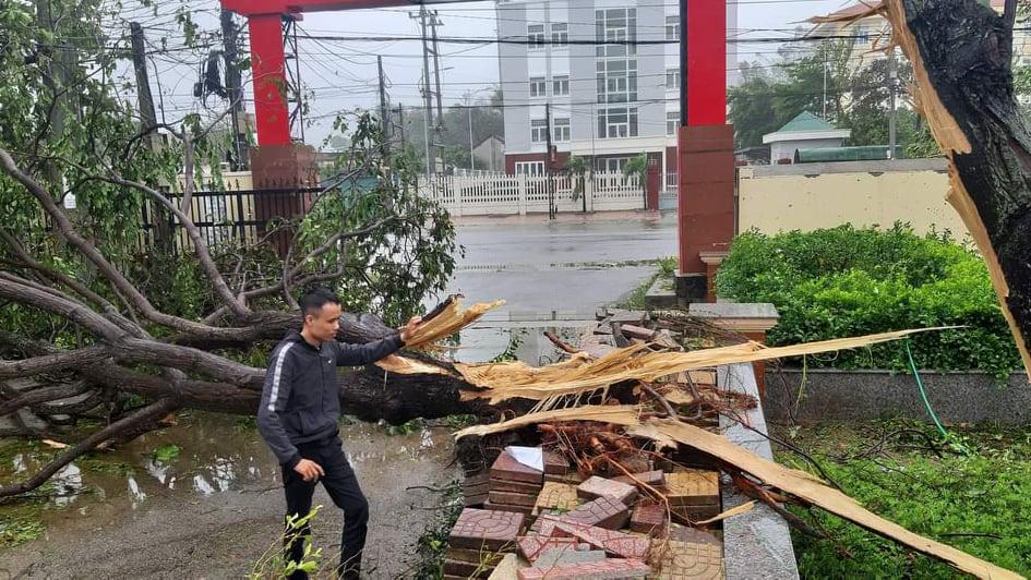 """Bãi """"chiến trường"""" mà bão số 9 tràn qua và để lại ở Quảng Nam, Quảng Ngãi - Ảnh 5."""