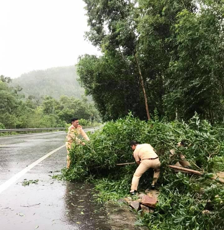"""Bình Định """"cấp tốc"""" dọn dẹp thiệt hại do bão số 9 - Ảnh 4."""