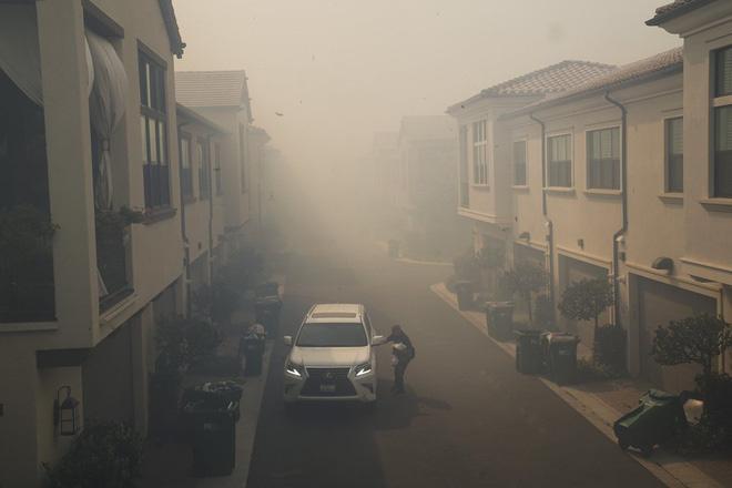 100.000 dân phải sơ tán vì cháy rừng - Ảnh 6.