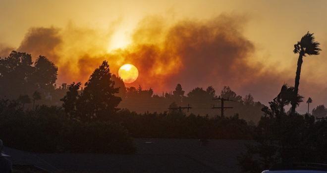 100.000 dân phải sơ tán vì cháy rừng - Ảnh 7.