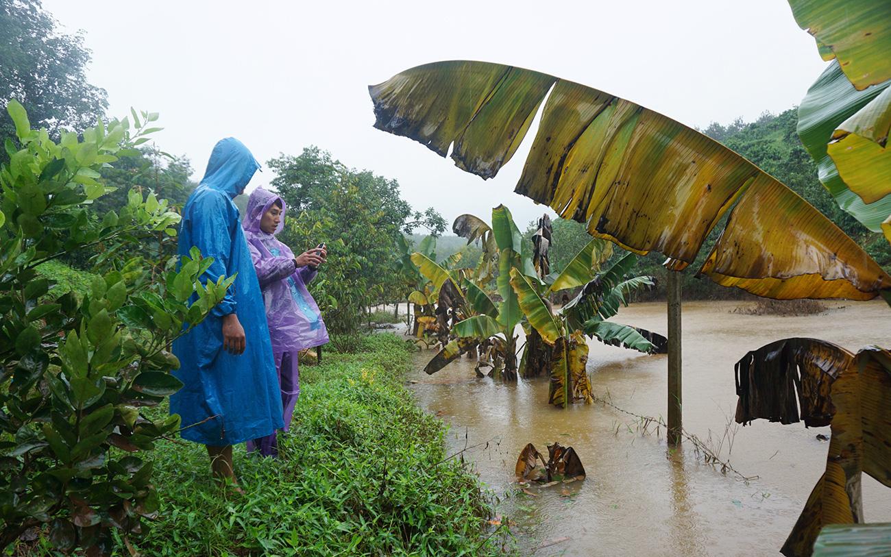 Thủy điện tích nước vô lối ở tỉnh Kon Tum: Tỉnh chỉ đạo xử phạt Công ty Tấn Phát-dư luận mong chờ thực thi