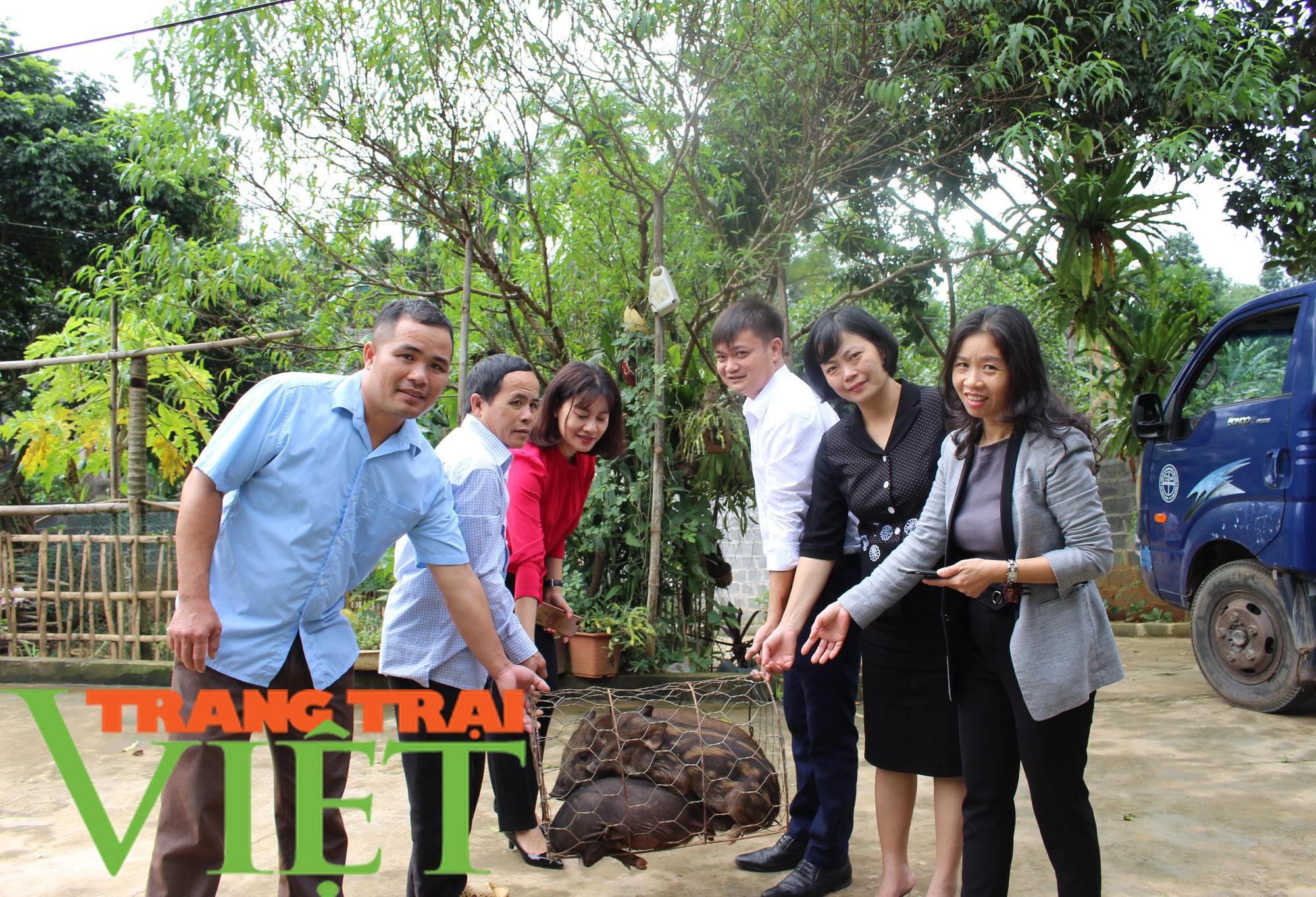 Hội Nông dân tỉnh Hòa Bình: Trao tặng lợn giống, vật tư chăn nuôi cho hội viên - Ảnh 1.