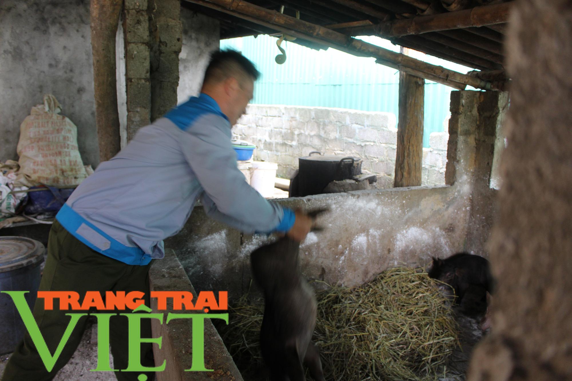 Hội Nông dân tỉnh Hòa Bình: Trao tặng lợn giống, vật tư chăn nuôi cho hội viên - Ảnh 2.