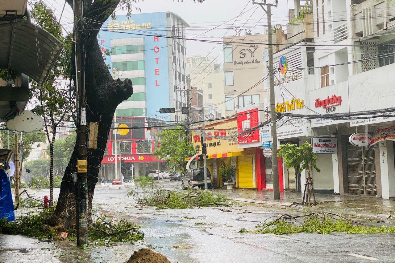"""Bãi """"chiến trường"""" mà bão số 9 tràn qua và để lại ở Đà Nẵng, Quảng Nam, Quảng Ngãi - Ảnh 14."""