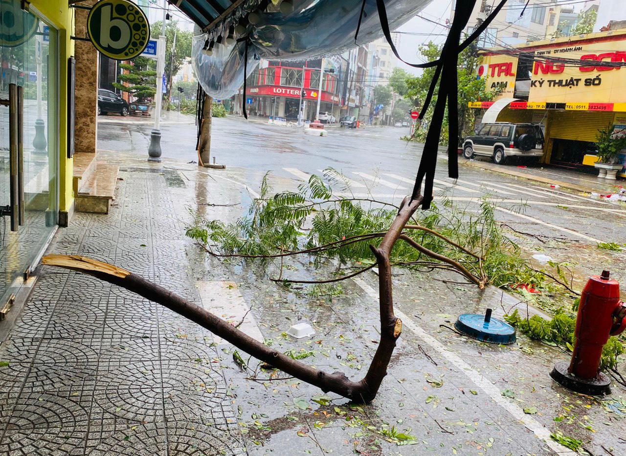 """Bãi """"chiến trường"""" mà bão số 9 tràn qua và để lại ở Đà Nẵng, Quảng Nam, Quảng Ngãi - Ảnh 17."""