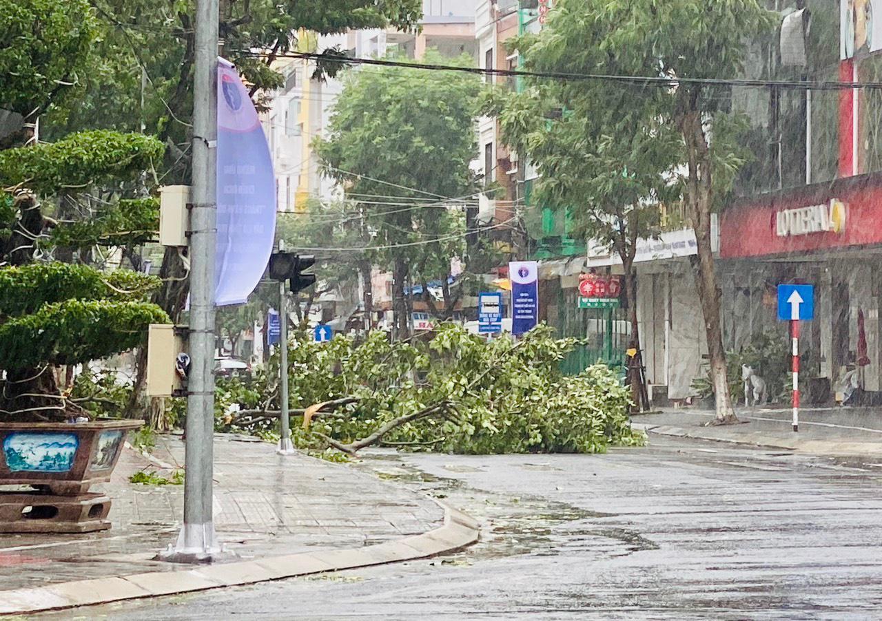 """Bãi """"chiến trường"""" mà bão số 9 tràn qua và để lại ở Đà Nẵng, Quảng Nam, Quảng Ngãi - Ảnh 20."""