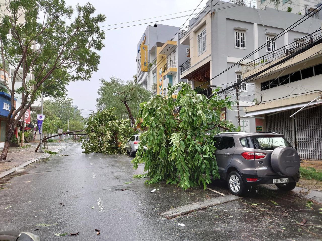 """Bãi """"chiến trường"""" mà bão số 9 tràn qua và để lại ở Đà Nẵng, Quảng Nam, Quảng Ngãi - Ảnh 21."""