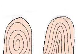Thời cổ đại chỉ có điểm chỉ vân tay, người xưa phá án thế nào? - Ảnh 2.