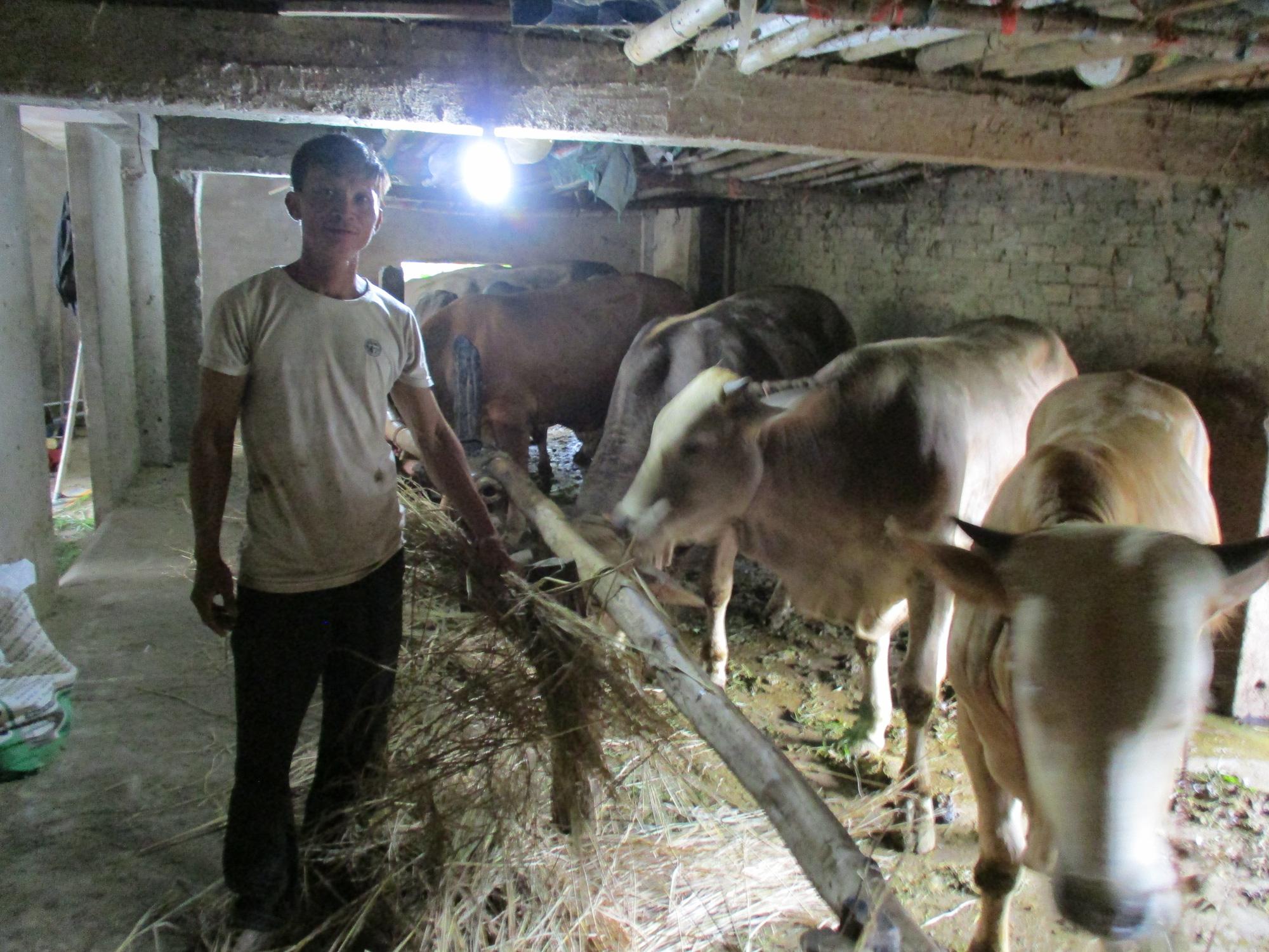 Quảng Nam: Hội Nông dân Điện Bàn – Điểm tựa cho bà con nông dân - Ảnh 2.