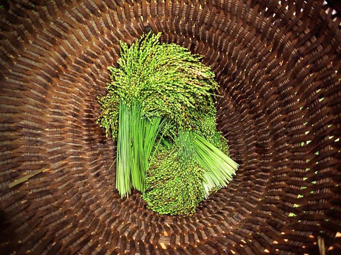 """Tây Bắc mùa lúa chín: Thưởng thức 5 đặc sản """"ăn là mê"""", loại thứ 3 phải cả gan mới dám thử - Ảnh 1."""