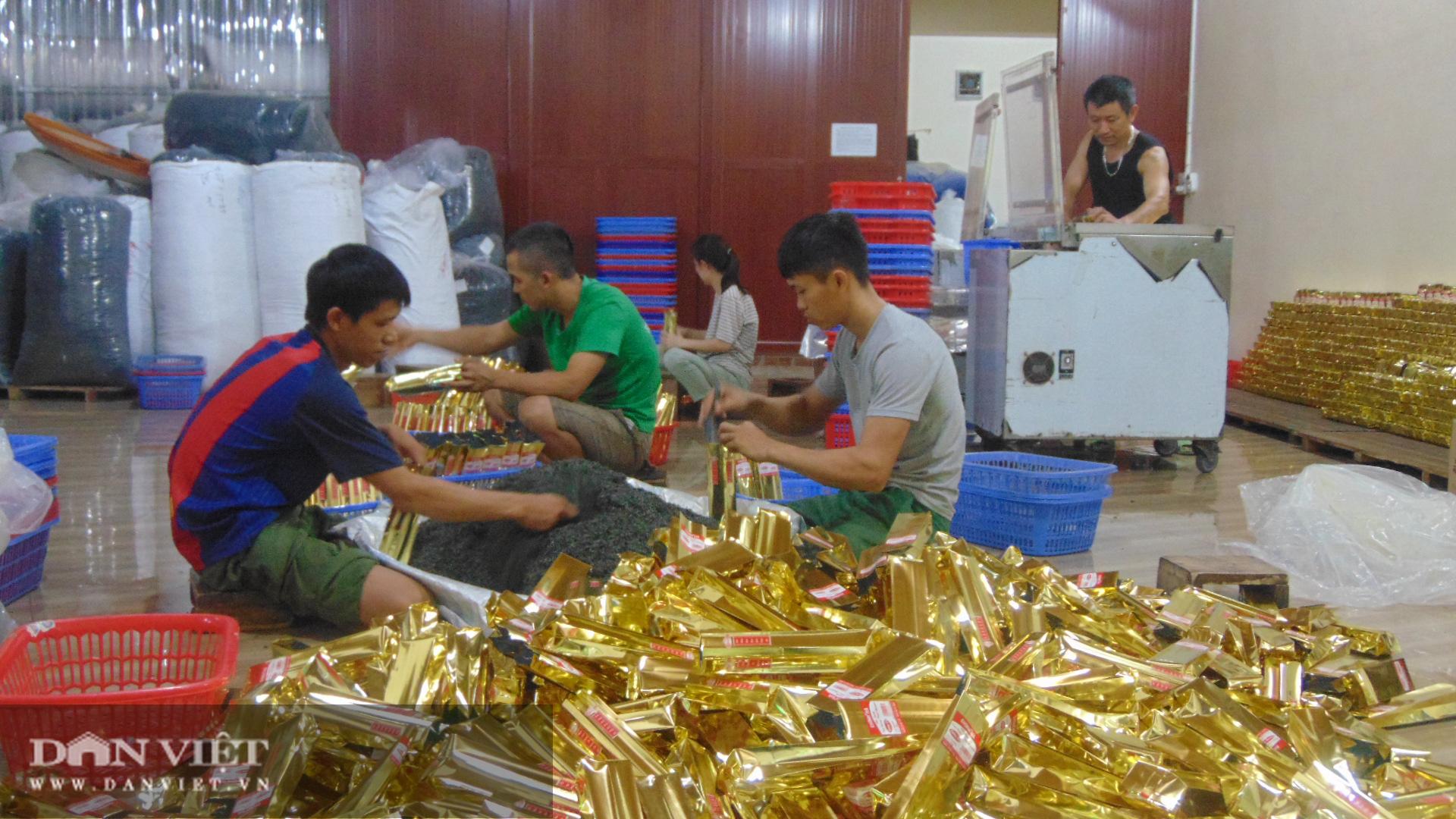 Từ bỏ nghề giáo, cô gái 8x Thái Nguyên về xây dựng thương hiệu chè truyền thống - Ảnh 1.