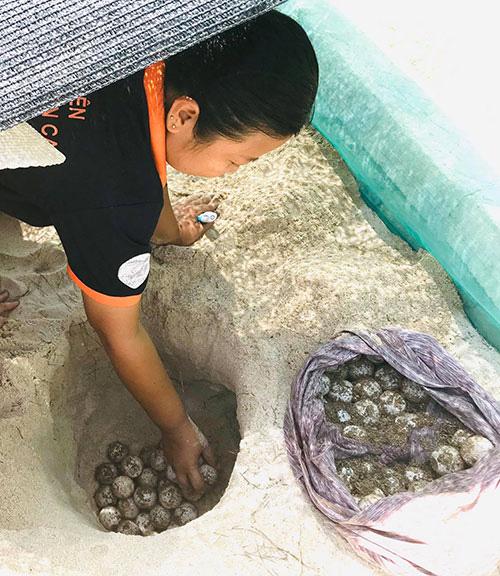"""Bình Thuận: """"Nàng Lưu Yến Phi"""" ở đảo Hòn Cau nín thở hồi hộp rồi vỡ òa hạnh phúc khi thấy điều này - Ảnh 3."""