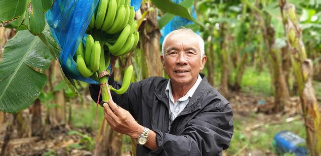 Thủ tướng Chính phủ đồng ý việc Hội Nông dân Việt Nam tổ chức kỷ niệm 90 năm ngày thành lập tổ chức này - Ảnh 2.