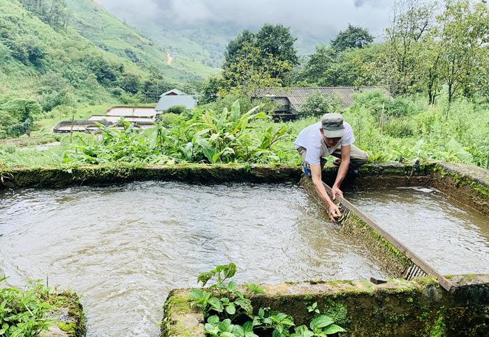 Kỳ lạ, nông dân be bờ đào ao lưng chừng núi nuôi thứ cá đặc sản bán đắt tiền ở Sa Pả, Sa Pa - Ảnh 3.
