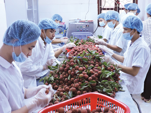 Xuất khẩu nông sản tự tin  cán đích 41 tỷ USD - Ảnh 1.