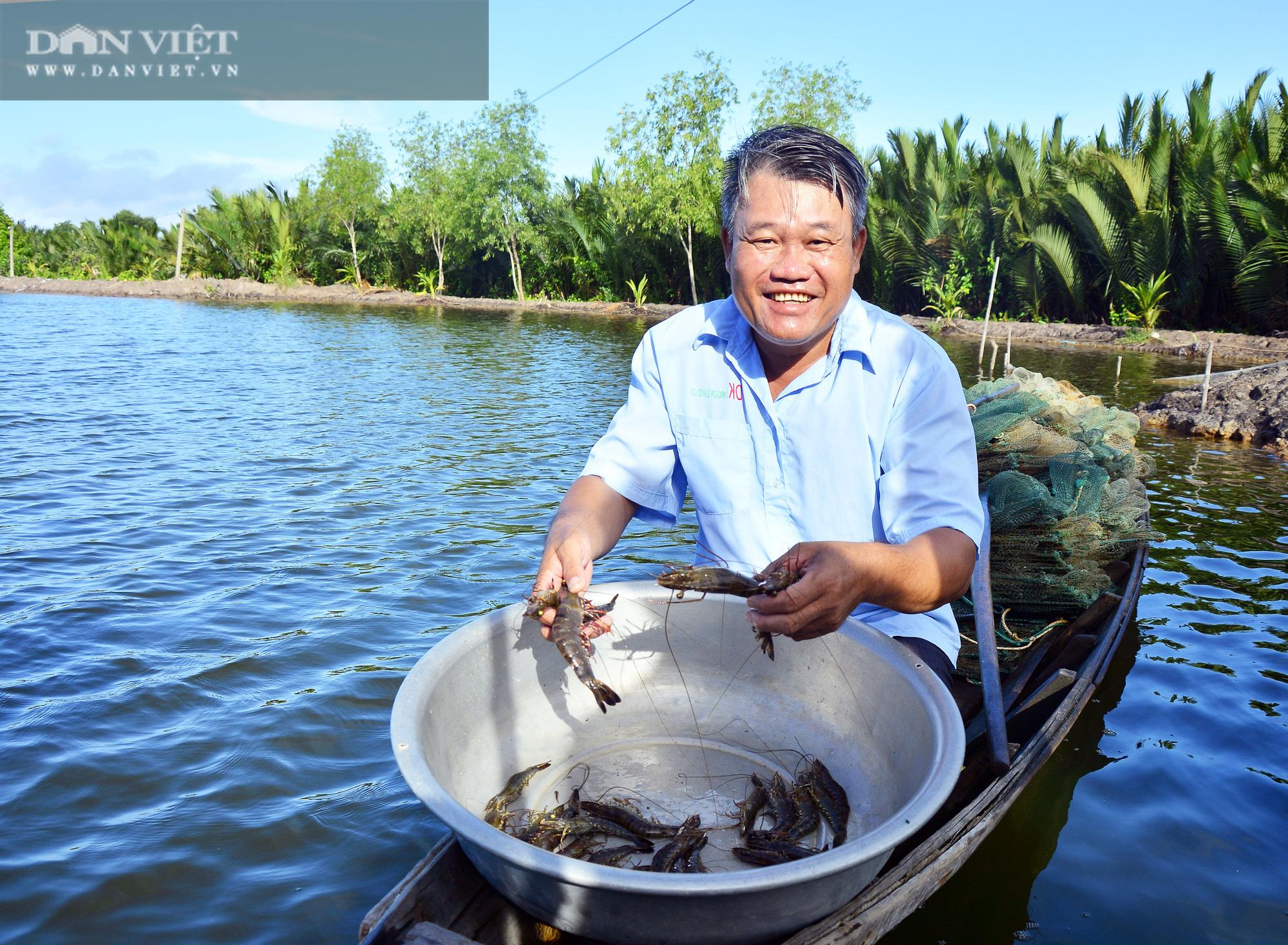 """Kiên Giang: Nông dân đổi đời nhờ cho tôm sú to bự """"chung nhà"""" với cua biển, chỉ 1 khu phố mà thu 140 tỷ"""