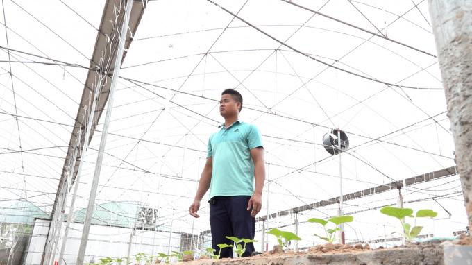 """3 năm đi làm cửu vạn không ăn thua, về nhà trồng dưa lưới thu 65 tấn quả """"hết veo trong 1 nốt nhạc"""" - Ảnh 1."""