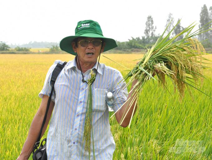 'Cha đẻ' gạo ST25 vẫn âm thầm nâng tầm gạo Việt - Ảnh 3.