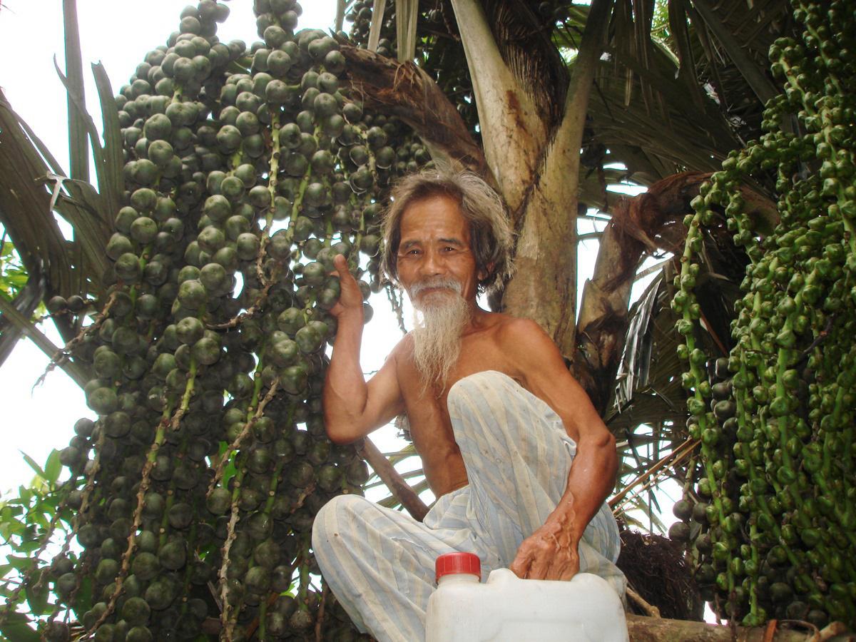 Quảng Nam: Vô rừng trèo lên cây dại hái ngàn quả xanh lét về bóc ra lấy thứ này nấu chè ăn sần sật - Ảnh 1.