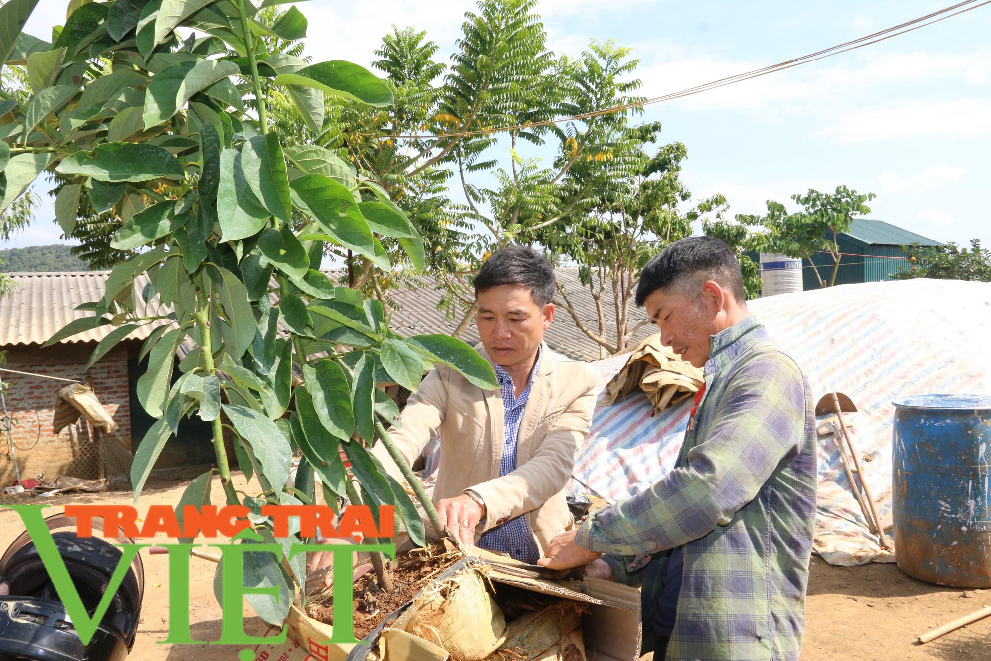 """""""Phao cứu sinh"""" giúp người Thái vùng cao thoát nghèo - Ảnh 3."""