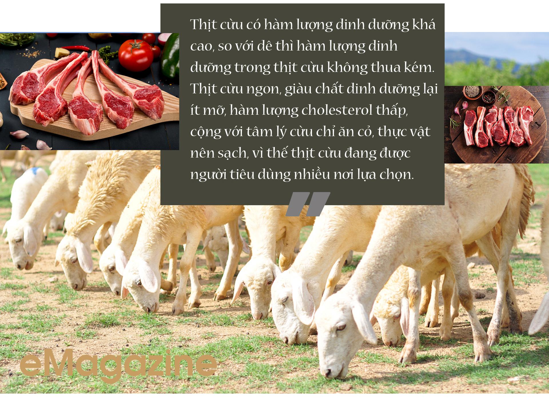 Nhiều tỉnh đã nuôi được cừu, nhưng nuôi bán thịt thì chỉ có tỉnh nào? - Ảnh 9.