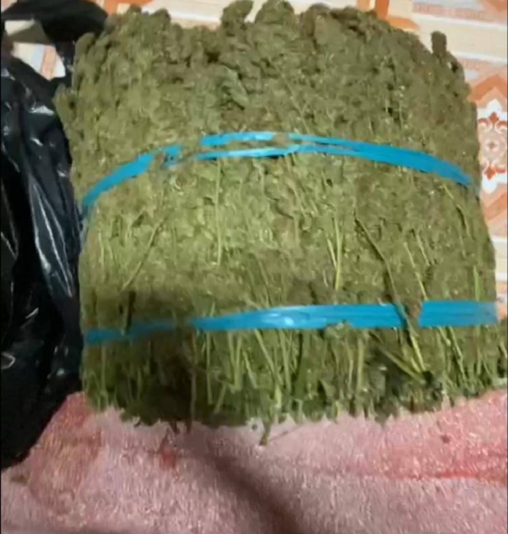 An Giang: Chở gần 12 kg thảo mộc, nghi là cần sa, bị phát hiện nhảy sông bỏ trốn - Ảnh 2.