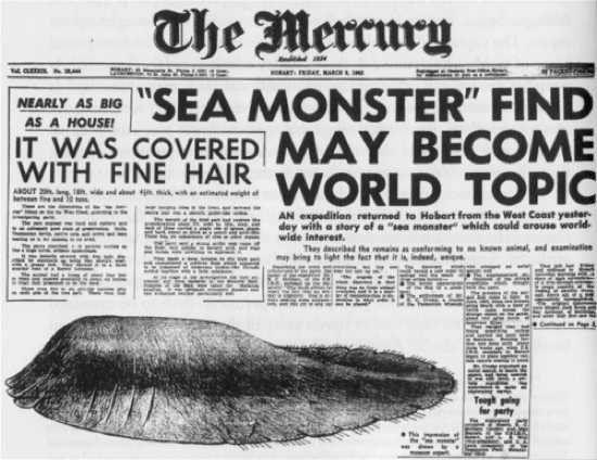 9 loài thủy quái có thật kinh hoàng nhất thế giới: Có 1 ở Việt Nam - Ảnh 14.