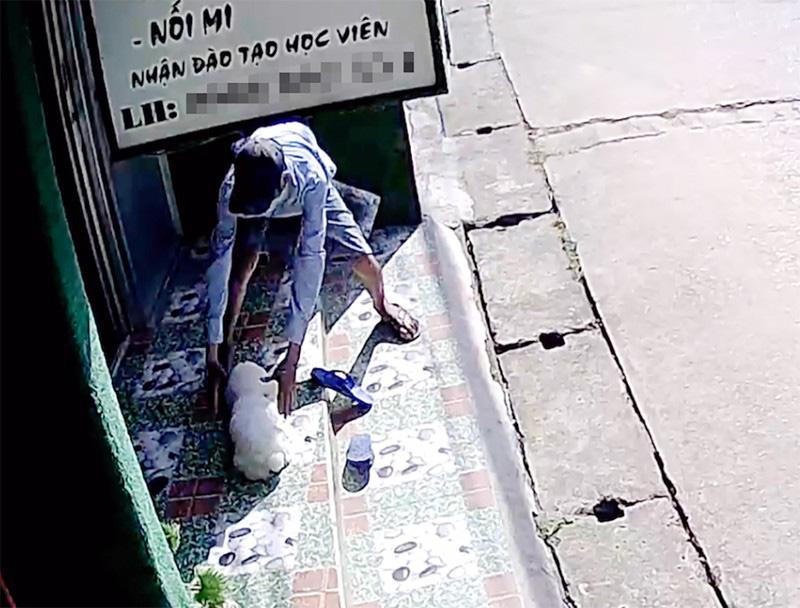 Camera ghi hình kẻ trộm bắt chó cảnh giá 10 triệu ở Thủ Đức - Ảnh 2.