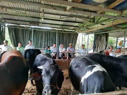 Quảng Nam: Hội Nông dân thị xã Điện Bàn - Trang bị kiến thức cho nông dân làm giàu - Ảnh 3.