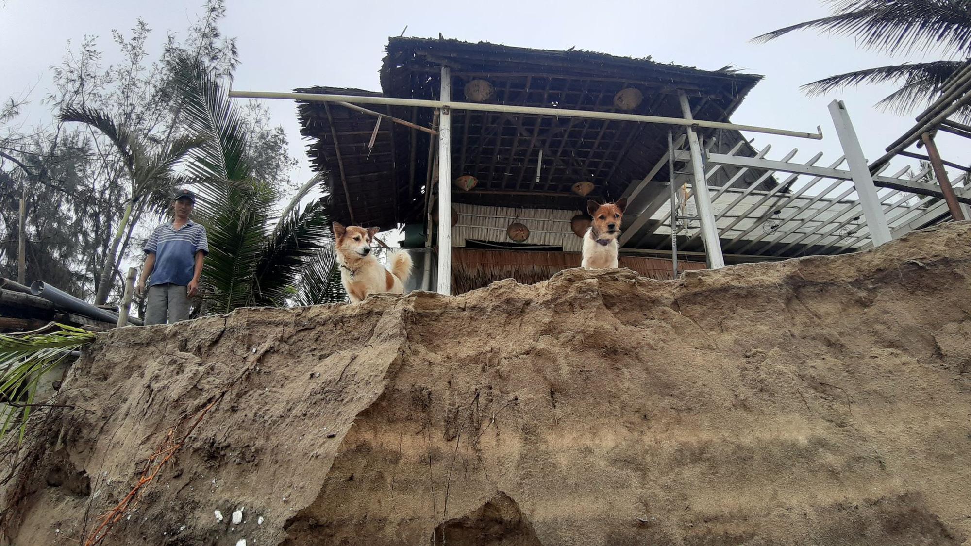 Ảnh hưởng bão số 13: Hàng chục nhà hàng ven biển An Bàng, Hội An bị đánh sập  - Ảnh 5.