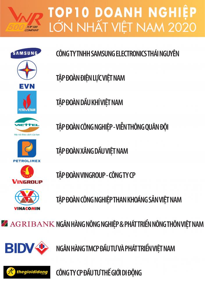 Những cái tên được xướng danh trong top 10 doanh nghiệp lớn nhất Việt Nam - Ảnh 1.