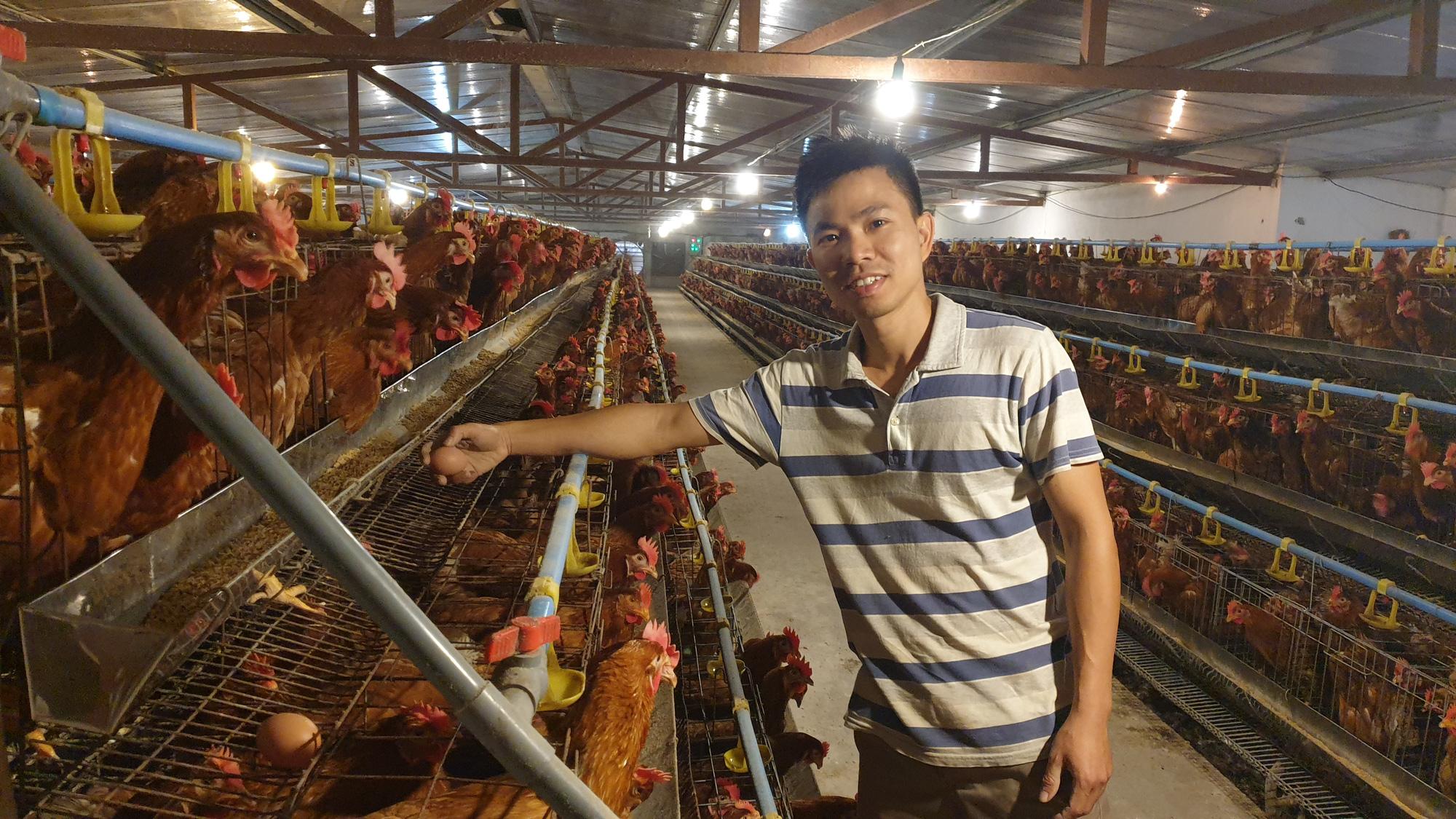 Nam Định: Bỏ việc văn phòng về quê nuôi gà đẻ, trứng bán cho siêu thị, 8x thu tiền tỷ/năm. - Ảnh 1.
