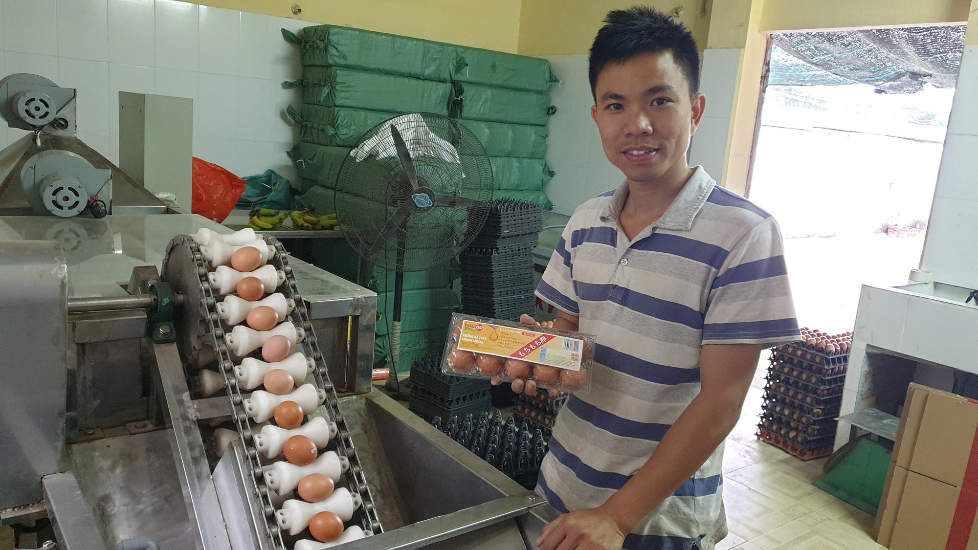 Nam Định: Bỏ việc văn phòng về quê nuôi gà đẻ, trứng bán cho siêu thị, 8x thu tiền tỷ/năm. - Ảnh 2.