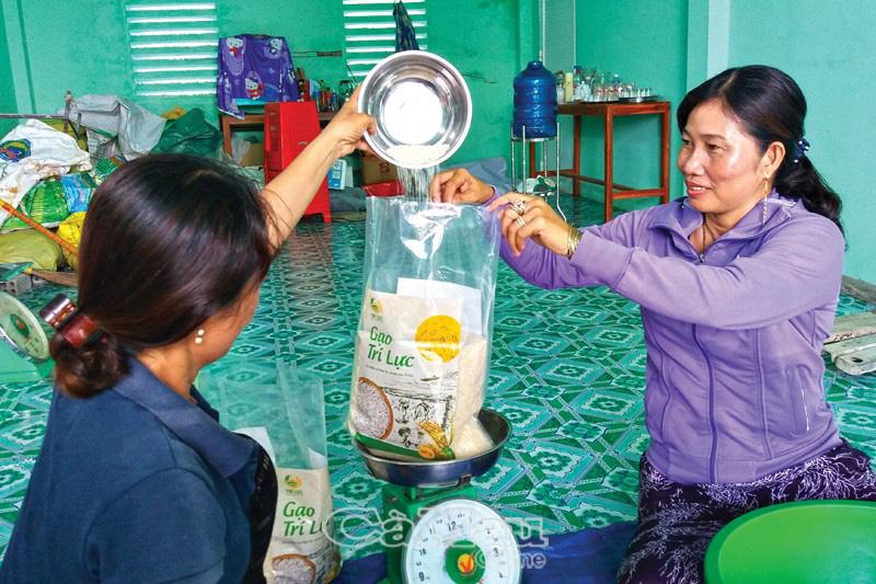 Cà Mau: Nông dân rủ nhau trồng thứ lúa hữu cơ và nuôi tôm càng xanh, gạo lắm người mua, tôm còn bán đắt hơn - Ảnh 1.