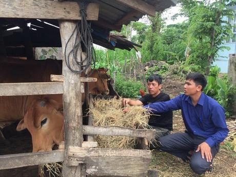 Giảm nghèo bền vững, nông thôn Cư M'gar đổi mới - Ảnh 1.