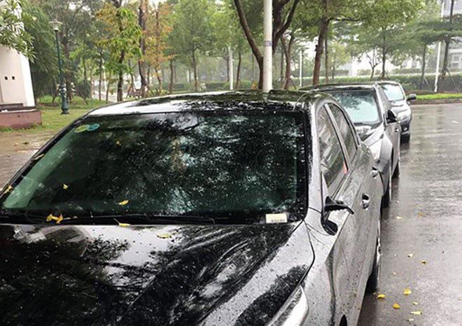 Theo dấu những kẻ chuyên trộm gương ô tô - Ảnh 4.