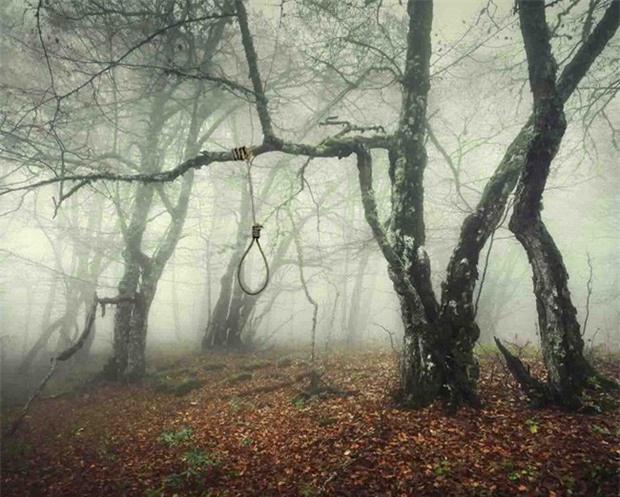 Khu rừng tự sát Aokigahara và những câu chuyện rùng rợn - Ảnh 3.